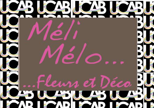 LogoUcabMeliMelo